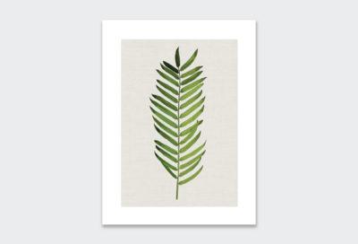 leaf-poster-4