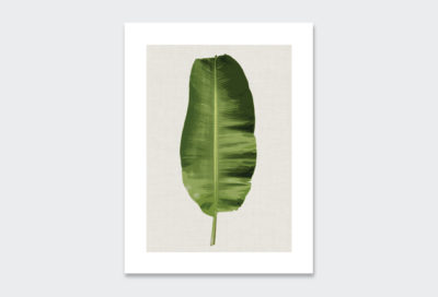 leaf-poster-5