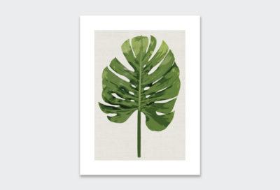 leaf-poster-6