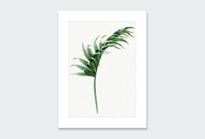 Leaf-8