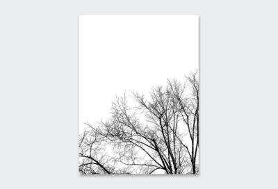 WINTER-TREE-LEFT