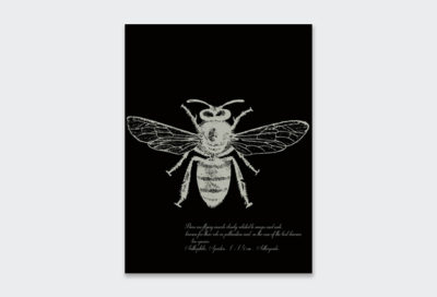 Black-Bee